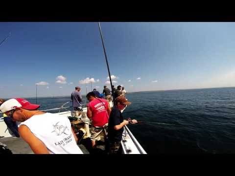 Frances Fleet Half Day Fishing Trip, Rhode Island, July 11, 2014 (GoPro)