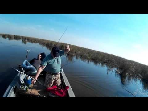 рыбалка на приазовских лиманах видео