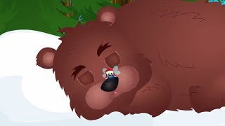 Stary niedźwiedź mocno śpi - piosenka dla przedszkolaków