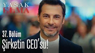 Şirketin yeni CEO'su - Yasak Elma 37. Bölüm