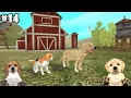 Dog Sim Online - Beagle and Golden Retriever - Android / iOS - Gameplay part 14