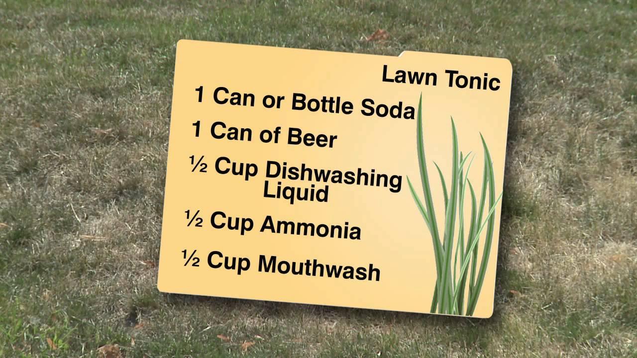 Mouthwash Mix Said to Revive Dull Lawns