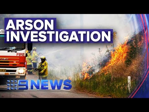 Police Are Investigating If Sydney Fires Were Deliberate | Nine News Australia