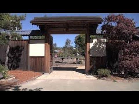 Lake Merritt Bonsai Garden Oakland Ca Youtube