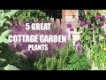 5 Plants for a Cottage Garden