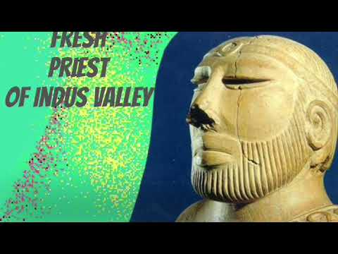 The Fresh priest of Indus Valley