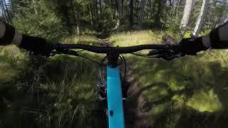 Ballo mountain bike trails on the canyon torque