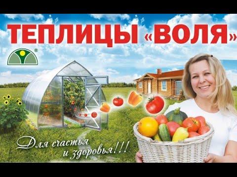 Теплицы и парники компании Воля г.Дубна