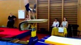 Спортивная гимнастика .