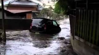 Amateur Cameraman Escapes Tsunami While Filming