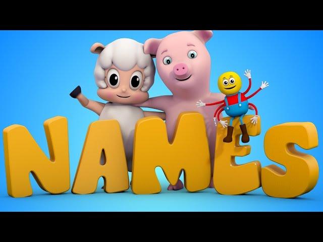 learn animals   kids education   animal rhymes