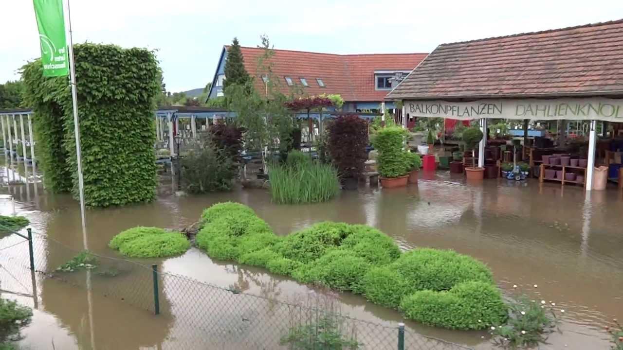 Hochwasser Überschwemmung in Jena Thüringen 03. Juni 2013 ...