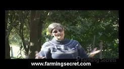 Dr. Elaine Ingham -- How To Make Organic Compost Series