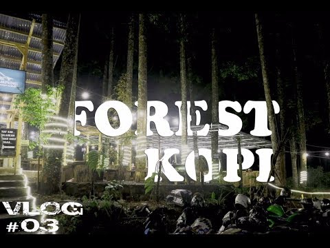 forest-kopi---tempat-yang-tepat-untuk-mencari-'senja'