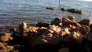 plage corse porto vecchio