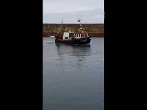 Rockhopper of Percuel entering Dunbar Harbour