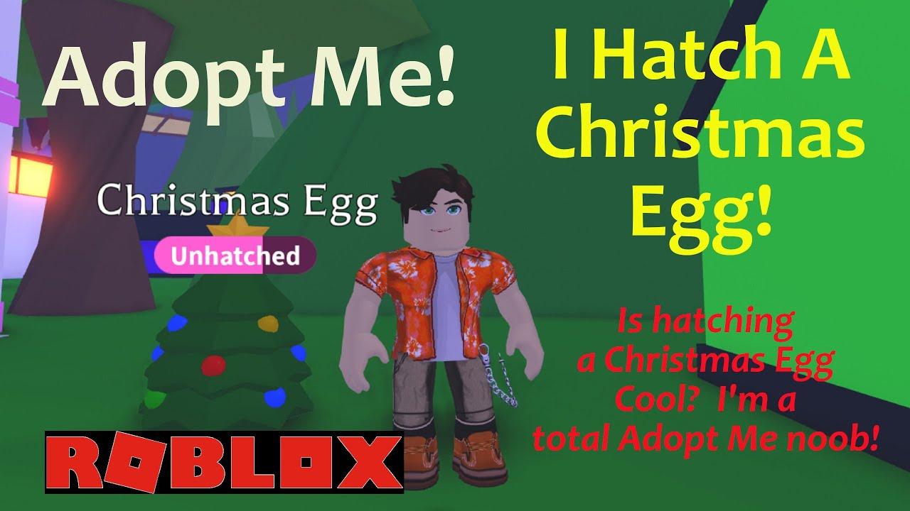 Adopt Me | Noob With A Christmas Egg - YouTube