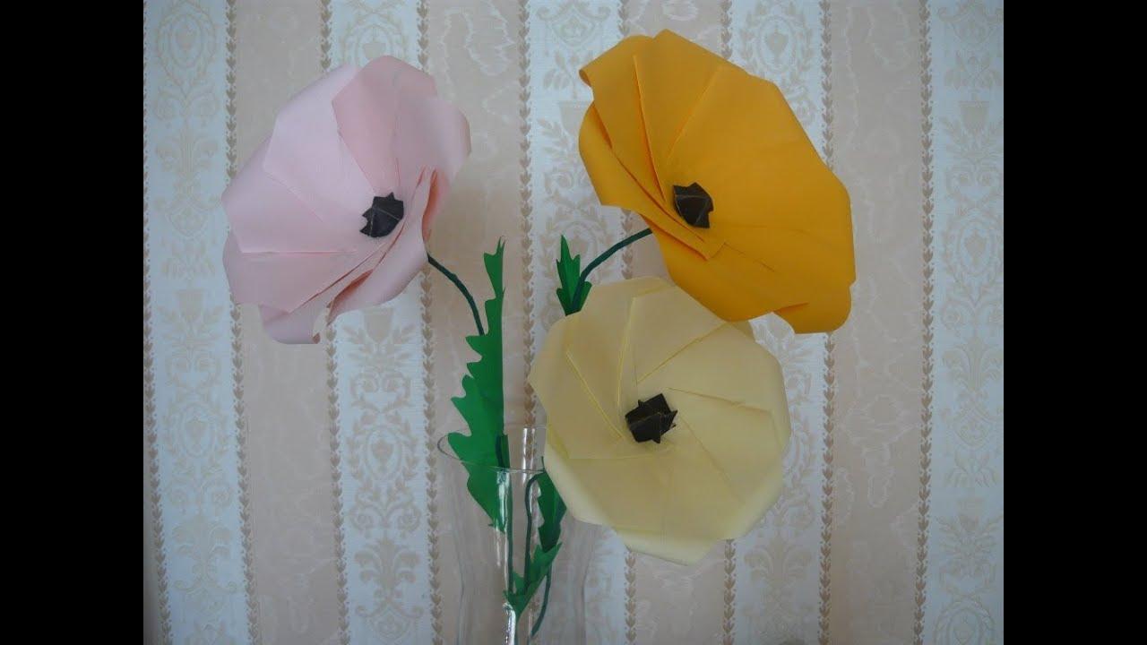 Мак Paper Poppy Flower