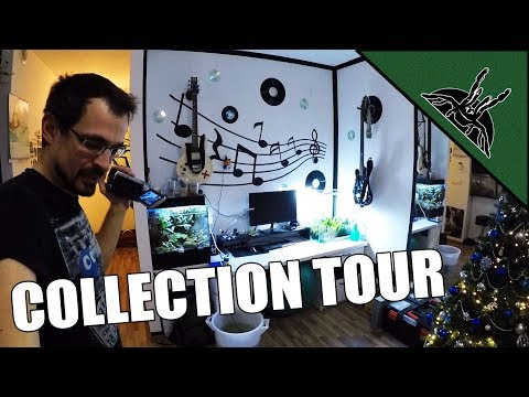 MY LAST COLLECTION TOUR!