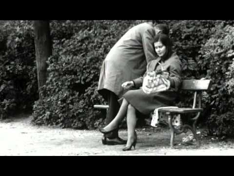 Bert Haanstra - Alleman [Everyman or The Human Dutch] (1963, English narration)