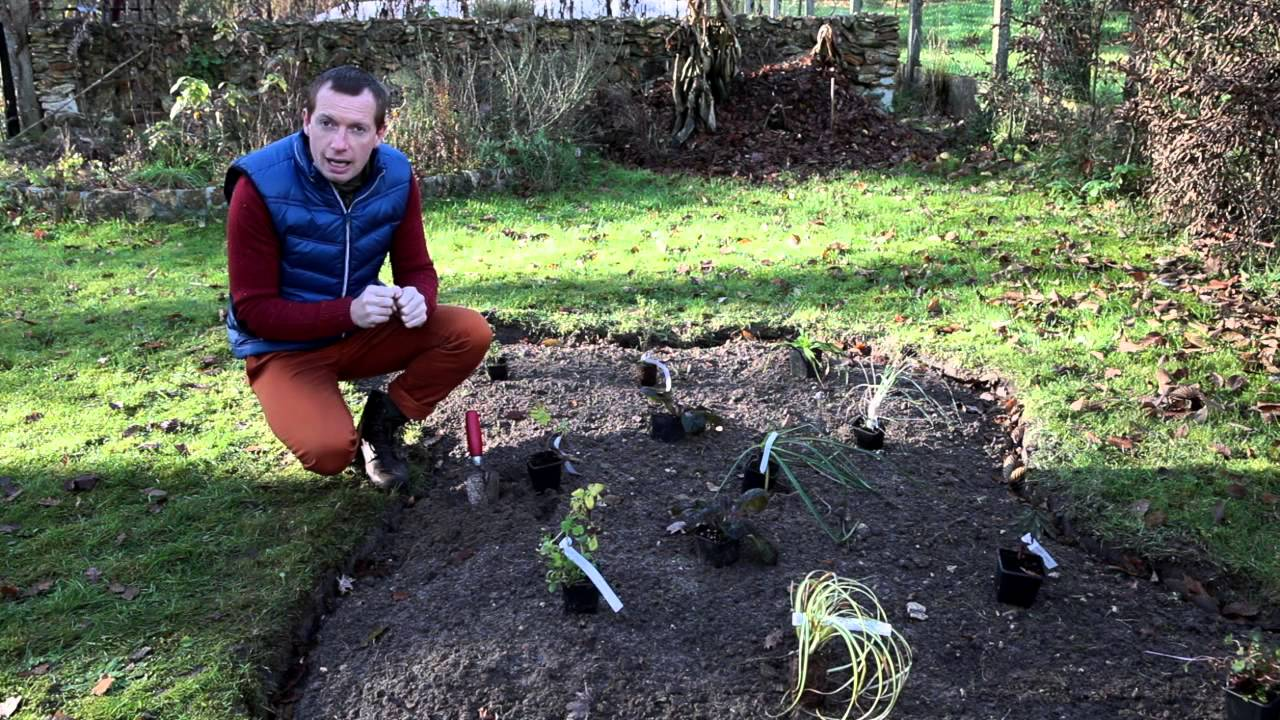 Comment cr er un massif de vivaces youtube for Jardin plante