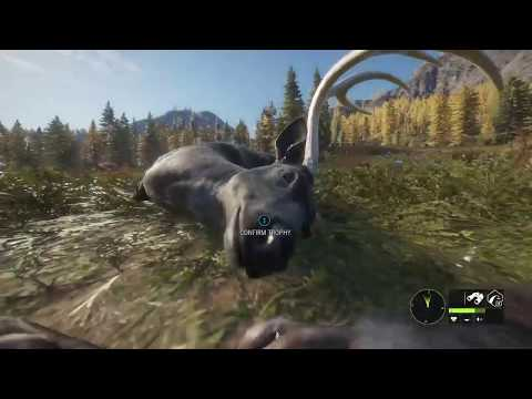Thehunter: Call Of The Wild Melanistic Blacktail Buck