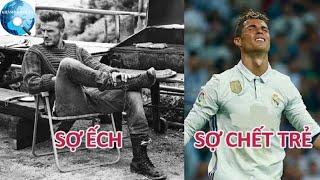 Những nỗi sợ hãi kỳ quặc của các ngôi sao bóng đá nổi tiếng
