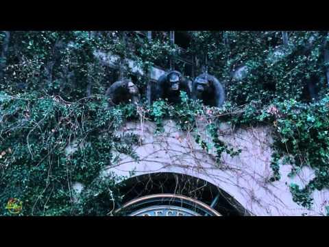 О съемках. Планета обезьян: Революция (2014)