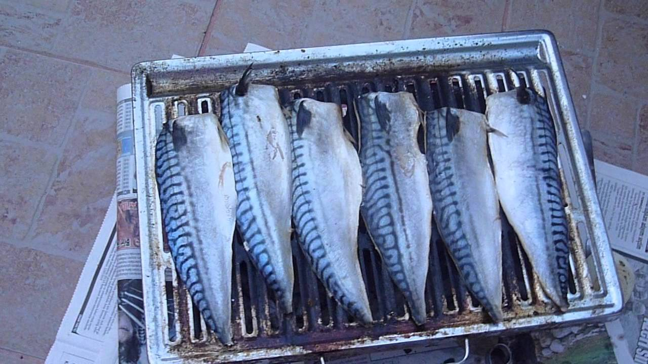 Palamut Balığı Nasıl Pişirilirse Lezzetli Olur