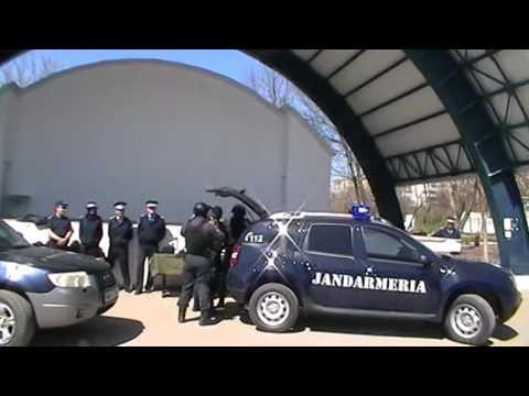 Exercițiu demonstrativ al jandarmilor din  Călărași de Ziua Jandarmeriei Române