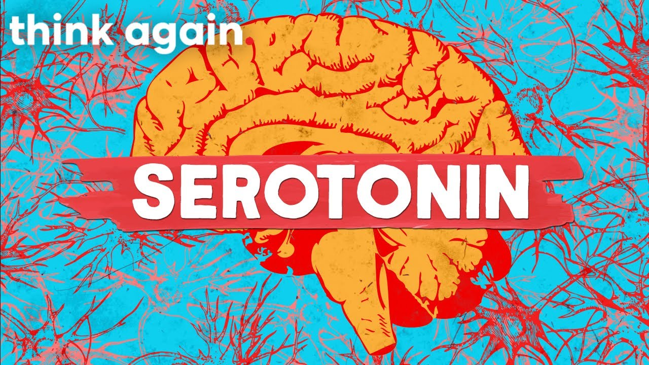 Is Serotonin The Happy Hormone? Think Again | Full Episode