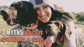 3 Myths About Owning A GSP