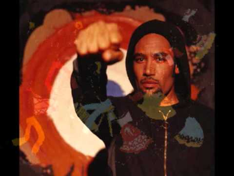 BEN HARPER   In the Colors