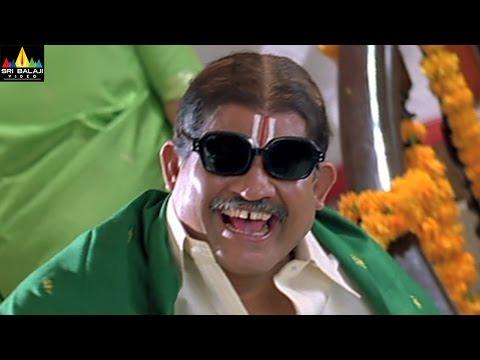 Tanikella Bharani Comedy Scenes Vol 04 | Back to Back Comedy Scenes | Sri Balaji Video