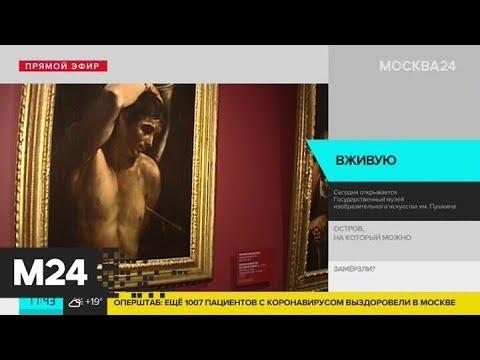 В Москве открывается Пушкинский музей - Москва 24