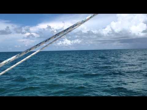 Capt Dave's Sailing Adventures - Crossing Great Bahama Bank from Bimini