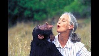 Love Revolution presents: Reasons for Hope - Jane Goodall PhD (UK)