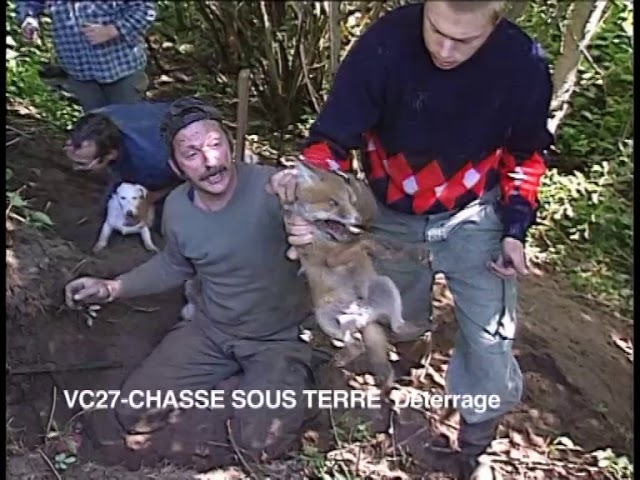 Chasse sous terre