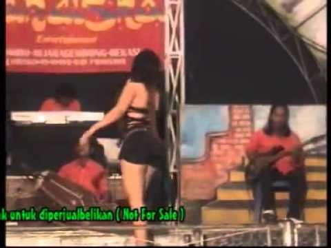 simalakama dangdut koplo hot