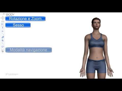 5.2 - Come studiare anatomia per il test di medicina. Anatomia umana 3d virtuale