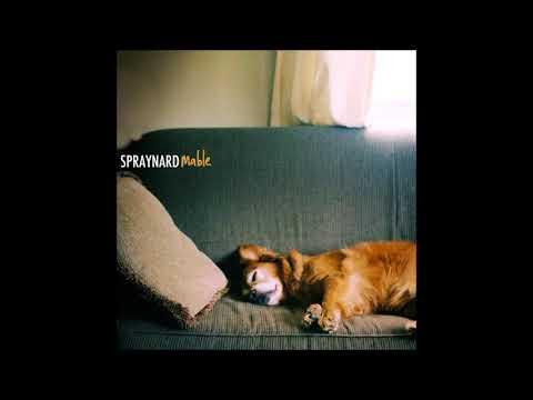 Spraynard - Buried
