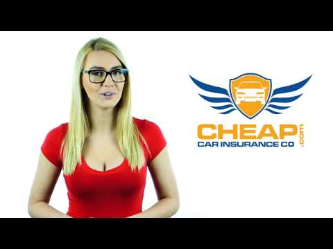 How Your Credit Scores Affect your Car Insurance Rates