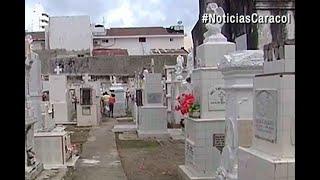 Ataque de abejas africanas en cementerio de Cartagena | Noticias Caracol