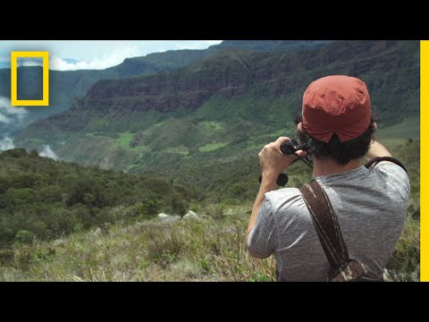 Birdwatching with FARC | National Geographic