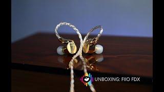 Unboxing FIIO FDX: tai nghe in-ear phiên bản kỷ niệm 14 năm thành lập hãng, mạ vàng 24K