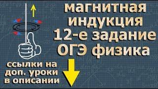 МАГНИТНОЕ ПОЛЕ ОГЭ физика ПОДГОТОВКА и разбор задания 12