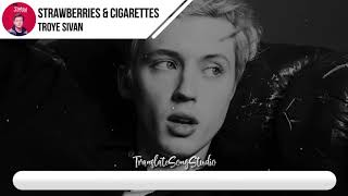 แปลเพลง Strawberries And Cigarettes - Troye Sivan