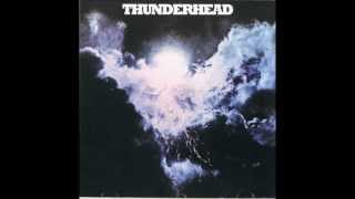 Thunderhead - Busted in Georgia