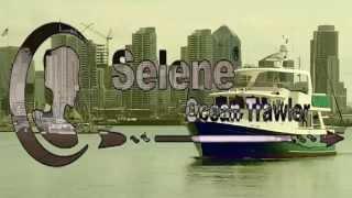 2008 Selene 53 Ocean Trawler $795,000