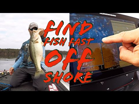 FAST!! EASY!! Beginners Guide To Off Shore Fishing